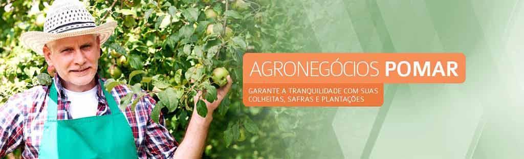 Seguro-de-Agronegócios-Pomar